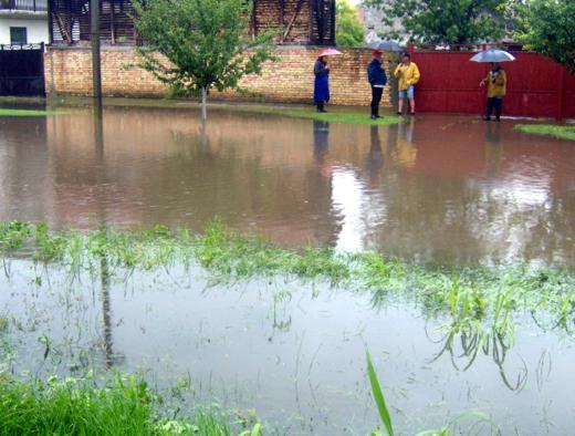 Kiša stala, a čuruške bašte pod vodom