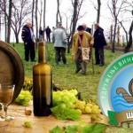 Саветовање на тему Унапређење воћарства и виноградарства у општини Тител
