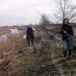 Воде Војводине пошумљавају обале Јегричке