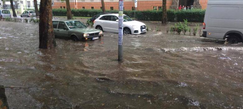 potopljene ulice novi sad