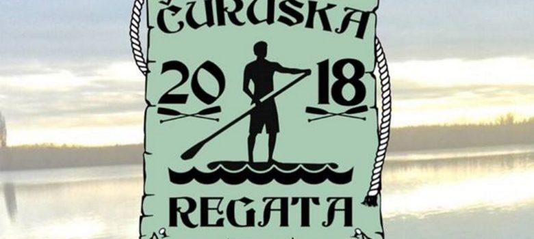 curuska regata 2018