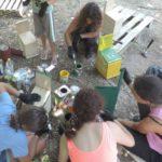 Тител домаћин међународног еколошког волонтерског кампа