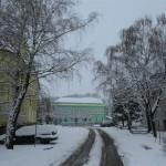 titel sneg 31