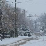 titel sneg 6
