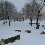 titel sneg 16