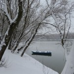 titel sneg 29