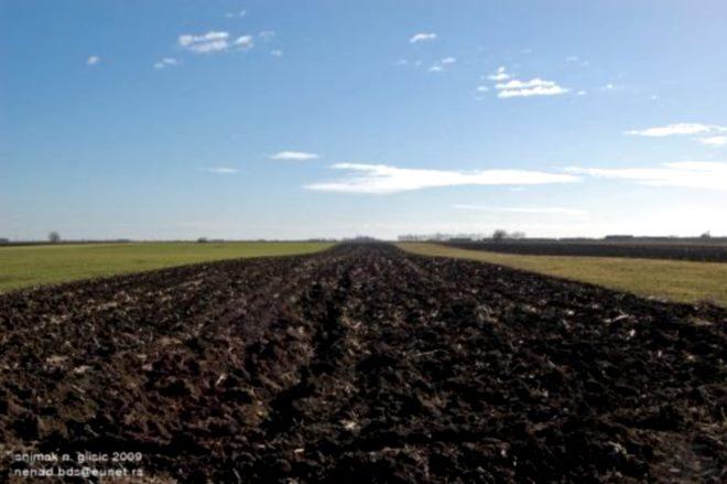 njiva ravnica zemljiste