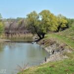 Река Јегричка – ушће у Тису