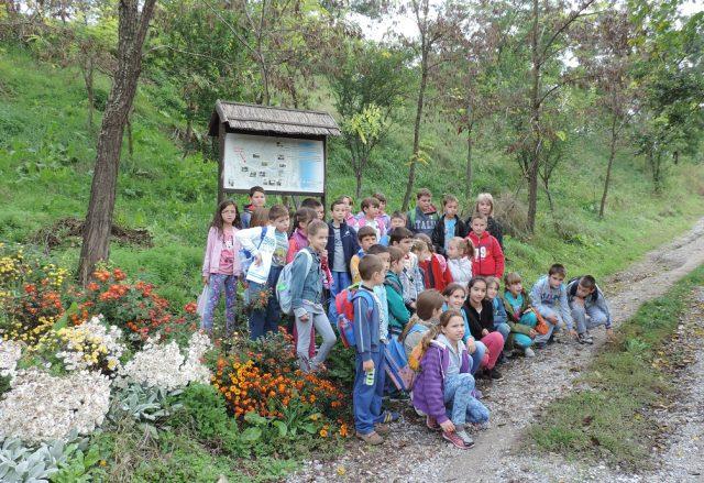 titelski breg osnovna skola lok