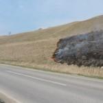 Предупређена већа штета од пожара на Тителском брегу