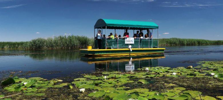 katamaran cigra jegricka vode vojvodine