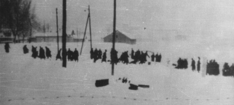 racija 1942 titel sajkaska