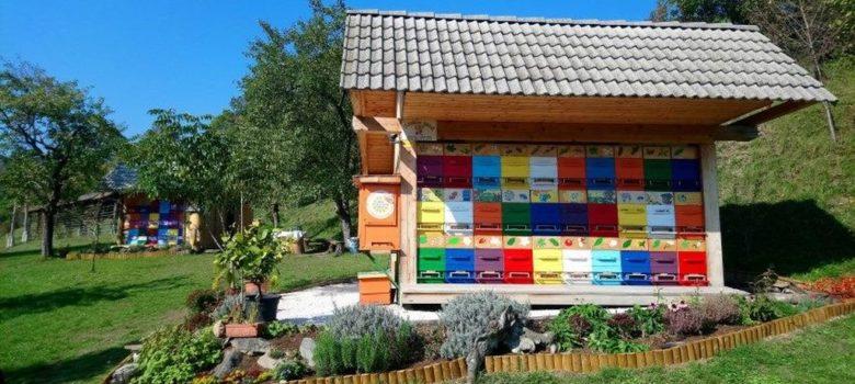putevima sira i meda slovenija