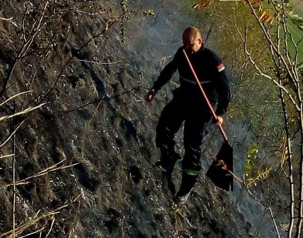 titelski breg spaljena vegetacija vatrogasci
