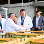 Отворена фабрика за прераду поврћа у Госпођинцима