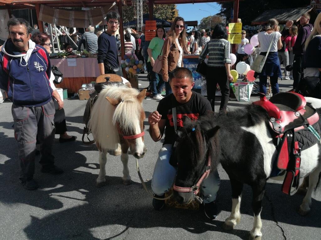 Коњи јесмо, ал нас свако гледи, коњска снага још и сада вреди!