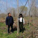 Шумовитост Војводине само 6,51 %
