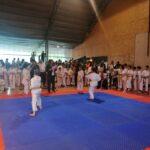 Тителски победник окупио више од 400 такмичара из 30 клубова